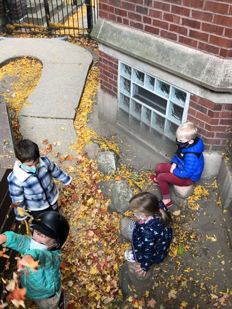 Fun with Fall Leaves!